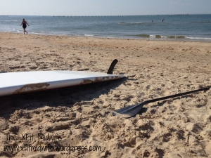 Stand-Up Paddle Board and the Chesapeake Bay